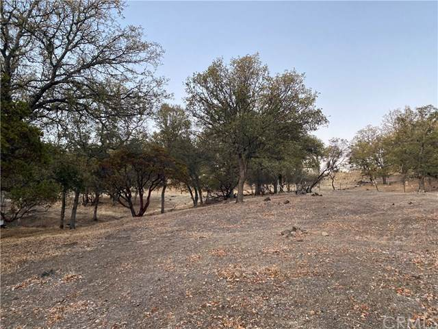 19136 Redbud Road, Hidden Valley Lake, CA 95467 (#LC20244963) :: Z Team OC Real Estate