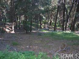 0 Mojave River Road Area, Big Bear, CA 92322 (#PW20245001) :: American Real Estate List & Sell