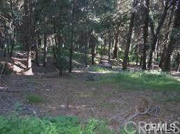 0 Mojave River Road Area, Big Bear, CA 92322 (#PW20245001) :: Steele Canyon Realty
