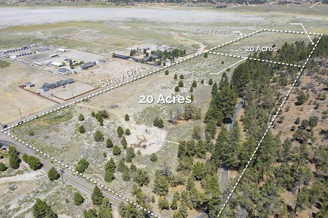 1670 Shay Road Road, Big Bear, CA 92314 (#V1-2684) :: The Costantino Group | Cal American Homes and Realty