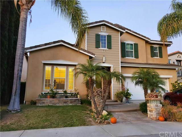 17181 Black Walnut Court, Yorba Linda, CA 92886 (#PW20245130) :: Bathurst Coastal Properties