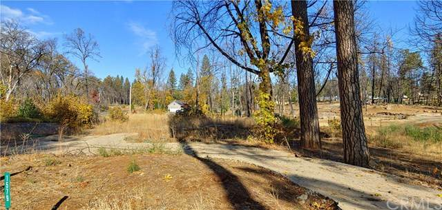 1579 Wagstaff Road, Paradise, CA 95969 (#PA20245217) :: The Laffins Real Estate Team