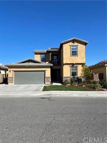 29488 Major League, Lake Elsinore, CA 92530 (#SW20245567) :: American Real Estate List & Sell