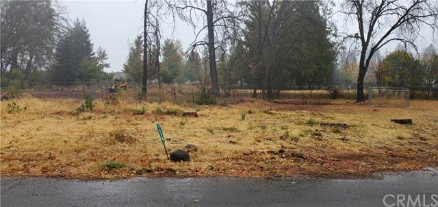 1280 Fawnbrook Place, Paradise, CA 95969 (#SN20245881) :: The Laffins Real Estate Team