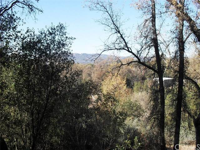 0-Lot 60 Deer Creek Drive, Oakhurst, CA 93644 (#FR20245345) :: Crudo & Associates
