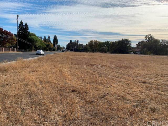 2805 Cohasset Road, Chico, CA 95973 (#SN20246164) :: The Laffins Real Estate Team
