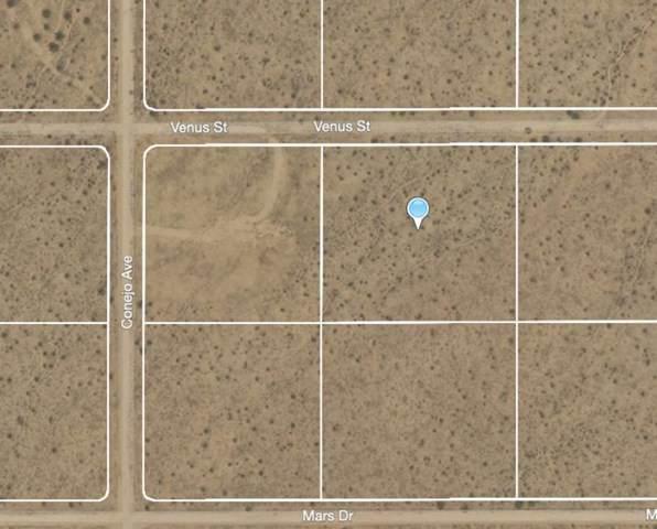 202 Venus Street, 29 Palms, CA 92277 (#219053631PS) :: Powerhouse Real Estate