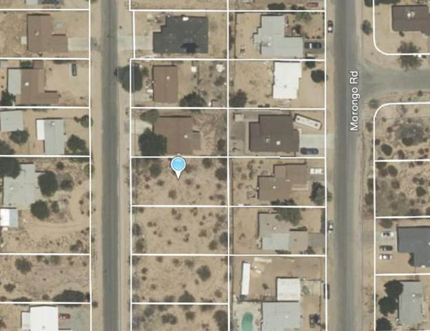 323 Mariposa Avenue, 29 Palms, CA 92277 (#219053639PS) :: Powerhouse Real Estate