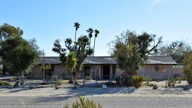 615 Cloudy Moon Drive, Borrego Springs, CA 92004 (#NDP2002949) :: The Alvarado Brothers