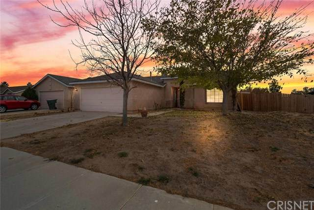 1040 Wedgewood Avenue, Rosamond, CA 93560 (#SR20246711) :: Steele Canyon Realty