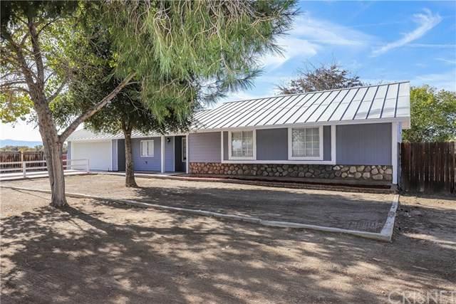 41133 176th Street E, Lancaster, CA 93535 (#SR20246807) :: Z Team OC Real Estate