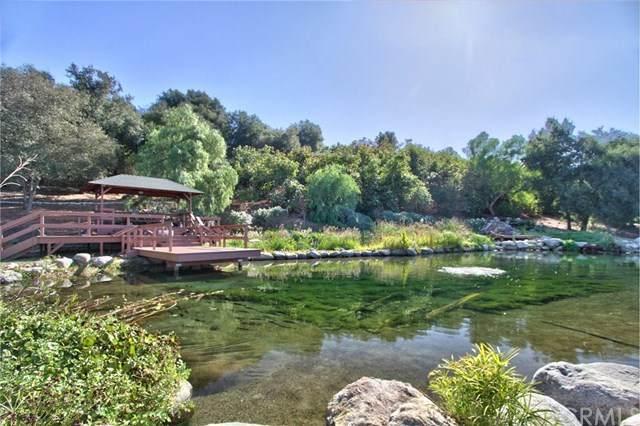 24405 Fuerte Rd, Temecula, CA 92590 (#SW20246256) :: Massa & Associates Real Estate Group | Compass