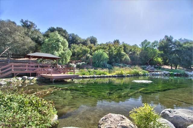 24405 Fuerte, Temecula, CA 92590 (#NDP2002984) :: Steele Canyon Realty