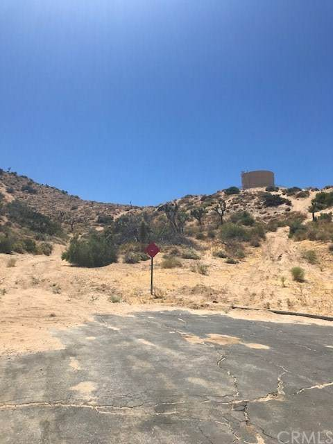 8461 Free Gold Court, Yucca Valley, CA 92284 (#JT20247001) :: Provident Real Estate