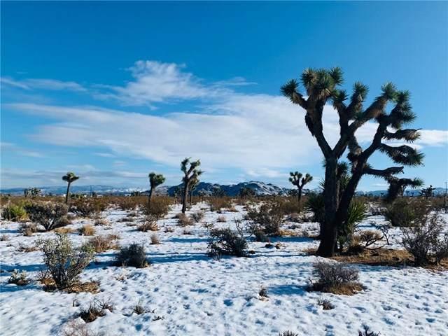 59000 La Crescenta Drive, Yucca Valley, CA 92252 (#JT20244764) :: Provident Real Estate