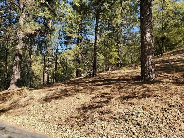 93 Park Drive, Running Springs, CA 92382 (#EV20247015) :: Provident Real Estate
