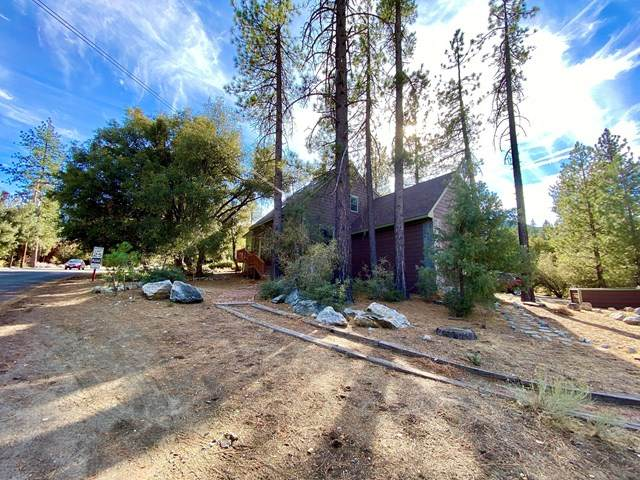 16200 Askin Drive, Pine Mountain Club, CA 93222 (#220011114) :: Realty ONE Group Empire