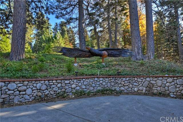 496 Cumberland Drive, Lake Arrowhead, CA 92352 (#EV20247224) :: Crudo & Associates