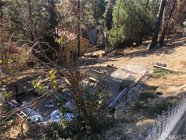 1231 Scenic Way, Rimforest, CA 92378 (#EV20247520) :: Steele Canyon Realty