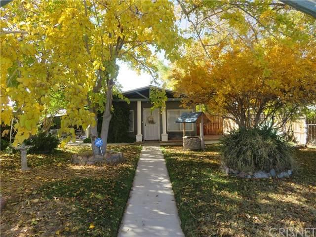 44601 Elm Avenue, Lancaster, CA 93534 (#SR20247348) :: American Real Estate List & Sell