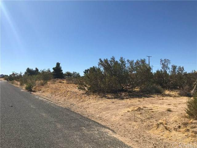5 Canterbury Street, Yucca Valley, CA 92284 (#JT20247586) :: Frank Kenny Real Estate Team