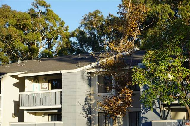 25611 Quail Run #4, Dana Point, CA 92629 (#LG20247861) :: Berkshire Hathaway HomeServices California Properties