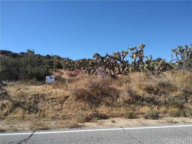 0 Longview Rd  S/O Old Homestead Rd, Juniper Hills, CA 93543 (#SR20248090) :: Power Real Estate Group