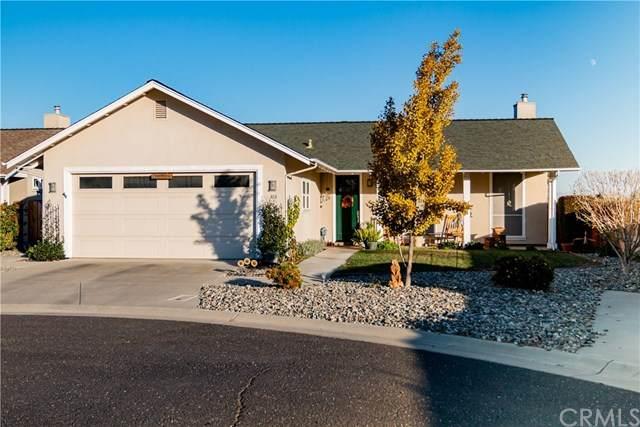 303 Mello Way, Orland, CA 95963 (#SN20247997) :: RE/MAX Empire Properties