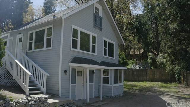 41157 Valley Of The Falls Drive, Forest Falls, CA 92339 (#EV20247773) :: Steele Canyon Realty