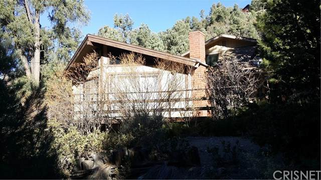 1712 Matterhorn Drive, Pine Mountain Club, CA 93222 (#SR20248467) :: Steele Canyon Realty