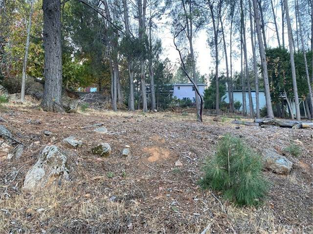 3525 Knob Cone Drive, Kelseyville, CA 95451 (#LC20249197) :: Compass