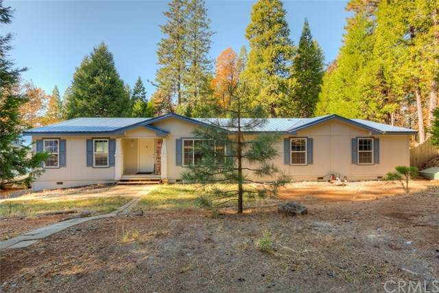 17209 Oak Street, Stirling City, CA 95978 (#SN20248772) :: Better Homes and Gardens Real Estate Vogler Feigen
