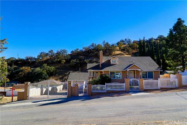 626 Canyon Drive, Lebec, CA 93243 (#NS20248109) :: Steele Canyon Realty