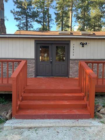 53420 Double View Drive, Idyllwild, CA 92549 (#220011181) :: Steele Canyon Realty