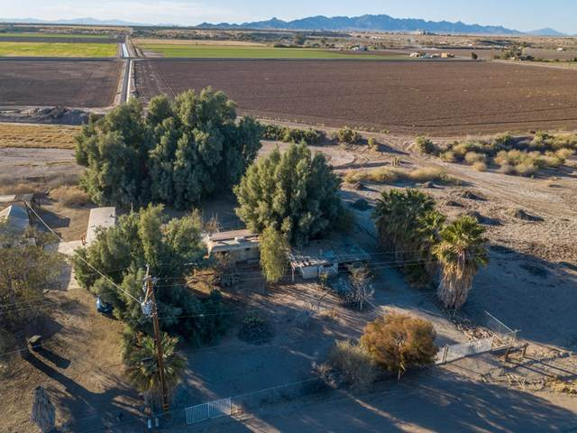 14671 Neighbours Boulevard, Blythe, CA 92225 (#219053952DA) :: Steele Canyon Realty