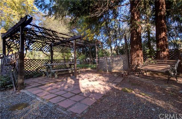 5298 Larkspur, Kelseyville, CA 95451 (#LC20242694) :: Laughton Team   My Home Group