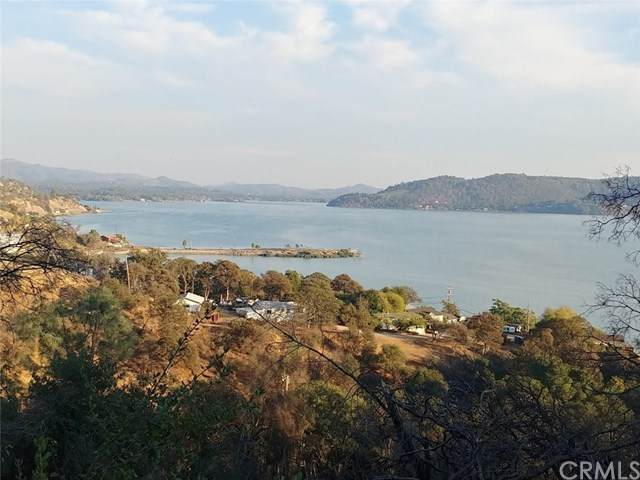 3079 Oak Crest Drive, Clearlake, CA 95422 (#LC20218594) :: Re/Max Top Producers