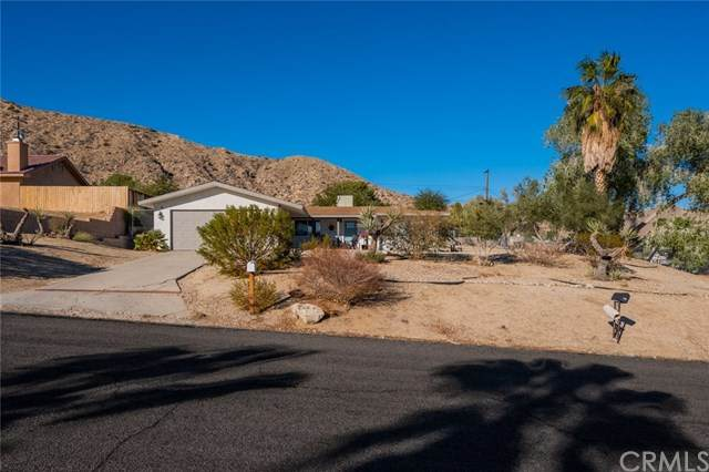48966 Hibiscus Drive, Morongo Valley, CA 92256 (#JT20248645) :: Team Tami