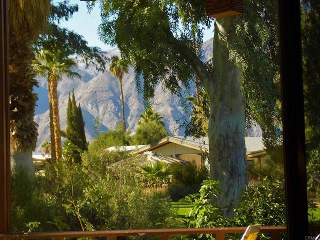 1010 Palm Canyon Dr #148 #148, Borrego Springs, CA 92004 (#NDP2003177) :: Bathurst Coastal Properties