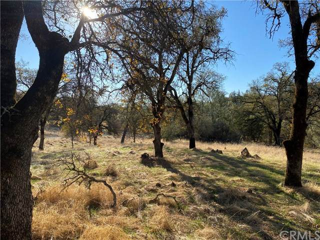 310 Hidden Mine Road, Yankee Hill, CA 95965 (#SN20250883) :: The Laffins Real Estate Team