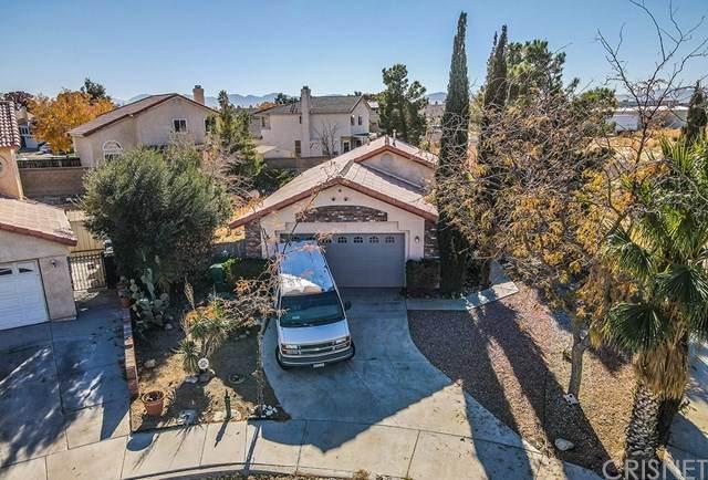 45300 Sontera Avenue, Lancaster, CA 93535 (#SR20246948) :: Steele Canyon Realty