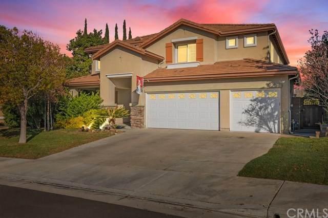 29236 Smokewood Drive, Murrieta, CA 92563 (#SW20244362) :: Crudo & Associates