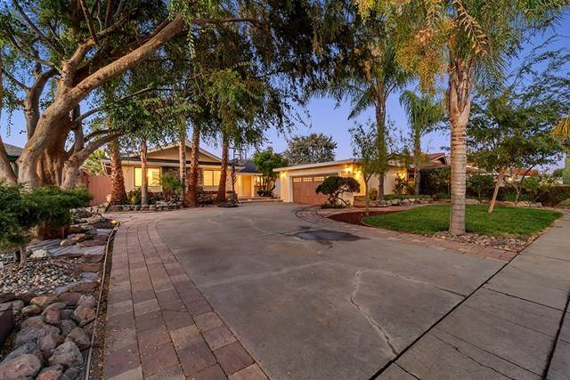 1371 Carrie Lee Way, San Jose, CA 95118 (#ML81822199) :: The Laffins Real Estate Team