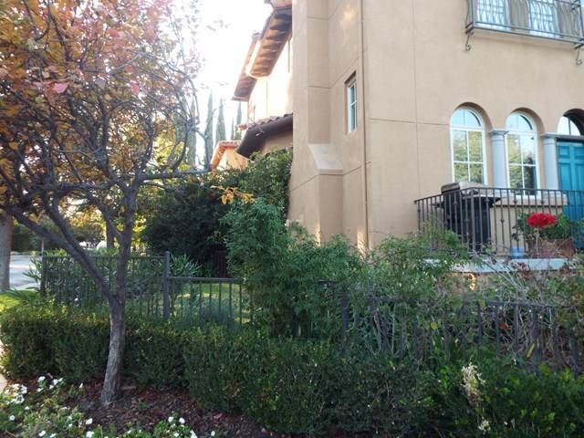 169 Cuesta Drive, Los Altos, CA 94022 (#ML81822204) :: The Laffins Real Estate Team