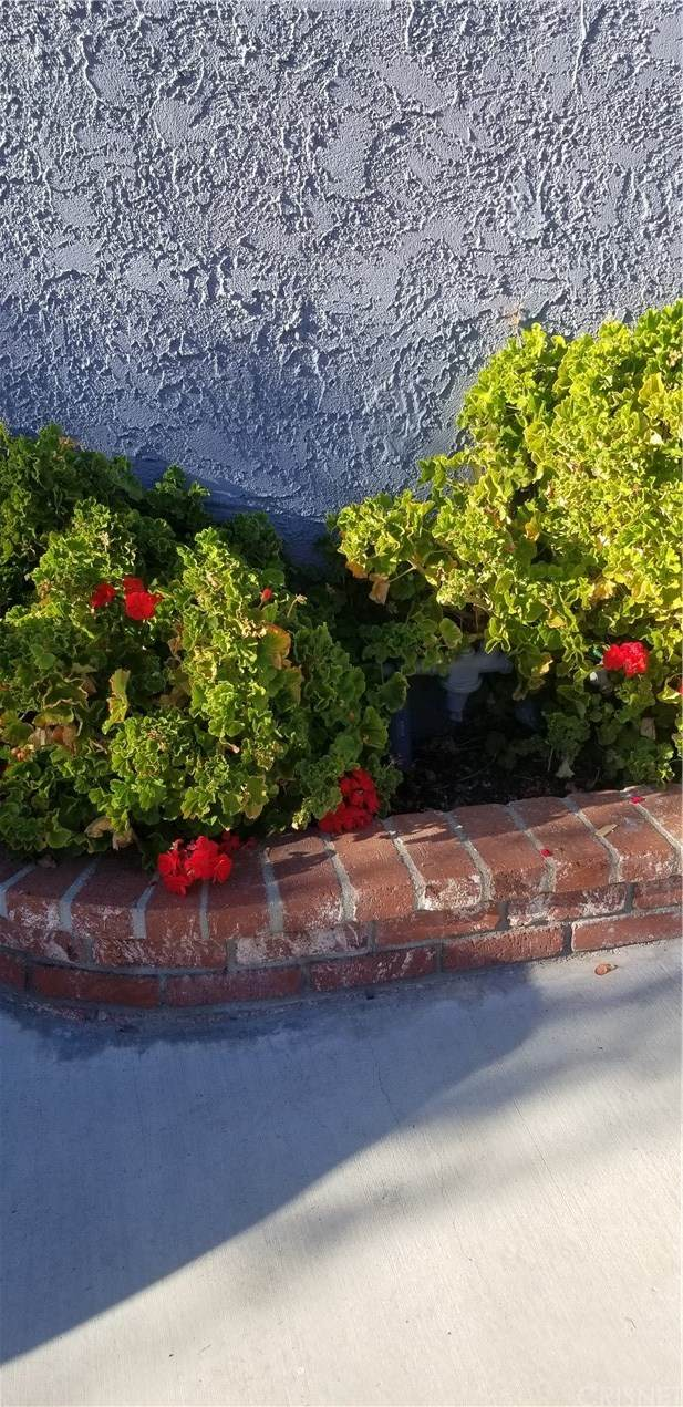 22607 Aguadero Place, Saugus, CA 91350 (#SR20251268) :: Crudo & Associates