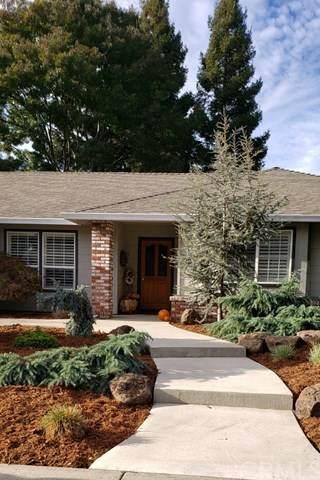 320 Sandy Cove Drive, Chico, CA 95973 (#SN20251558) :: Bathurst Coastal Properties