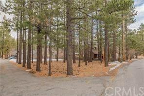 39942 Lakeview Drive, Big Bear, CA 92315 (#PW20251711) :: Crudo & Associates