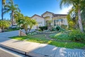 3074 Palm Vista Court, El Cajon, CA 92019 (#ND20248142) :: RE/MAX Masters