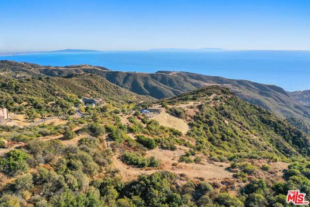 0 2175 Little Las Flores Rd, Malibu, CA 90265 (#20667566) :: American Real Estate List & Sell