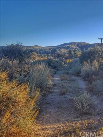 0 Chihuahua Valley Road, Warner Springs, CA 92086 (#ND20252058) :: RE/MAX Masters